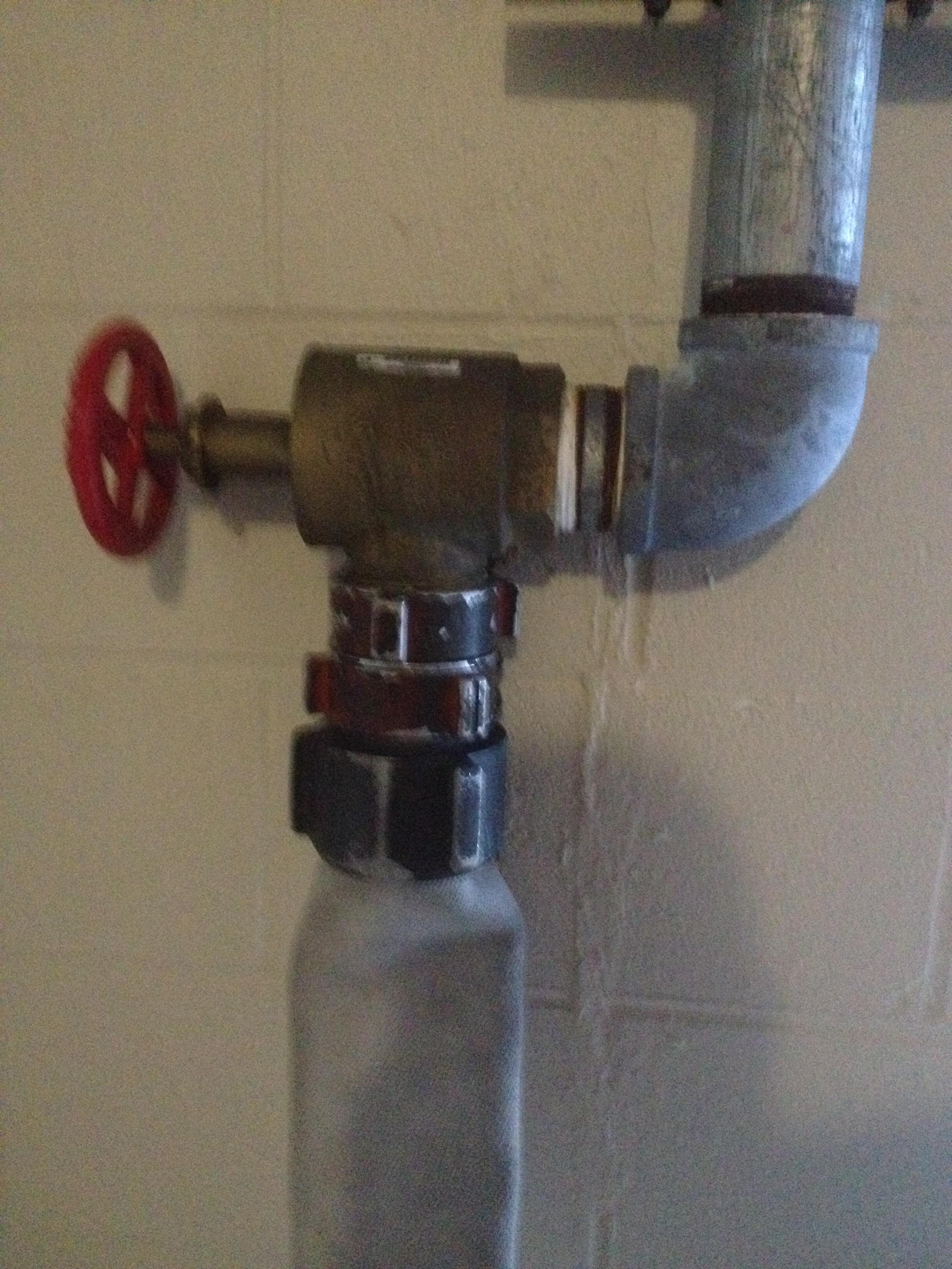 A proper hose down - 1 8